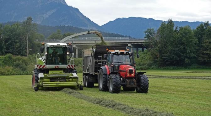Ernte Service Thaler beim Gras Häckseln